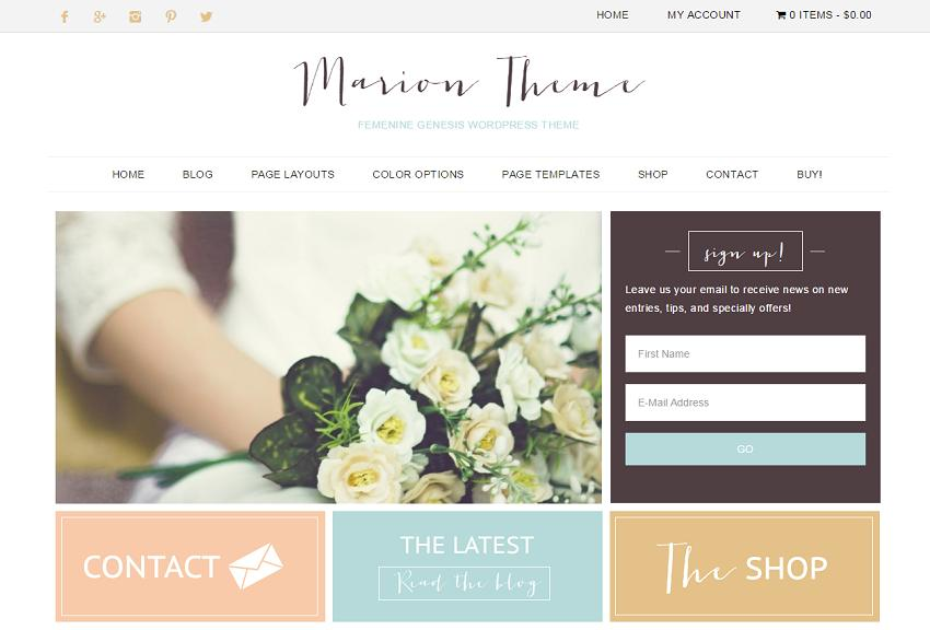 minimal and simple wordpress theme