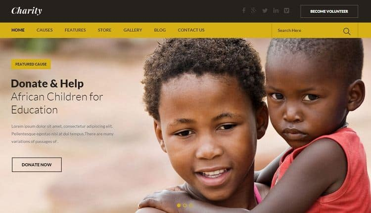 non profit wordpress theme for charity