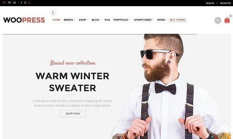 new wordpress themes