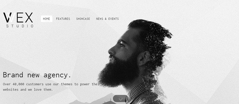simple wordpress portfolio theme