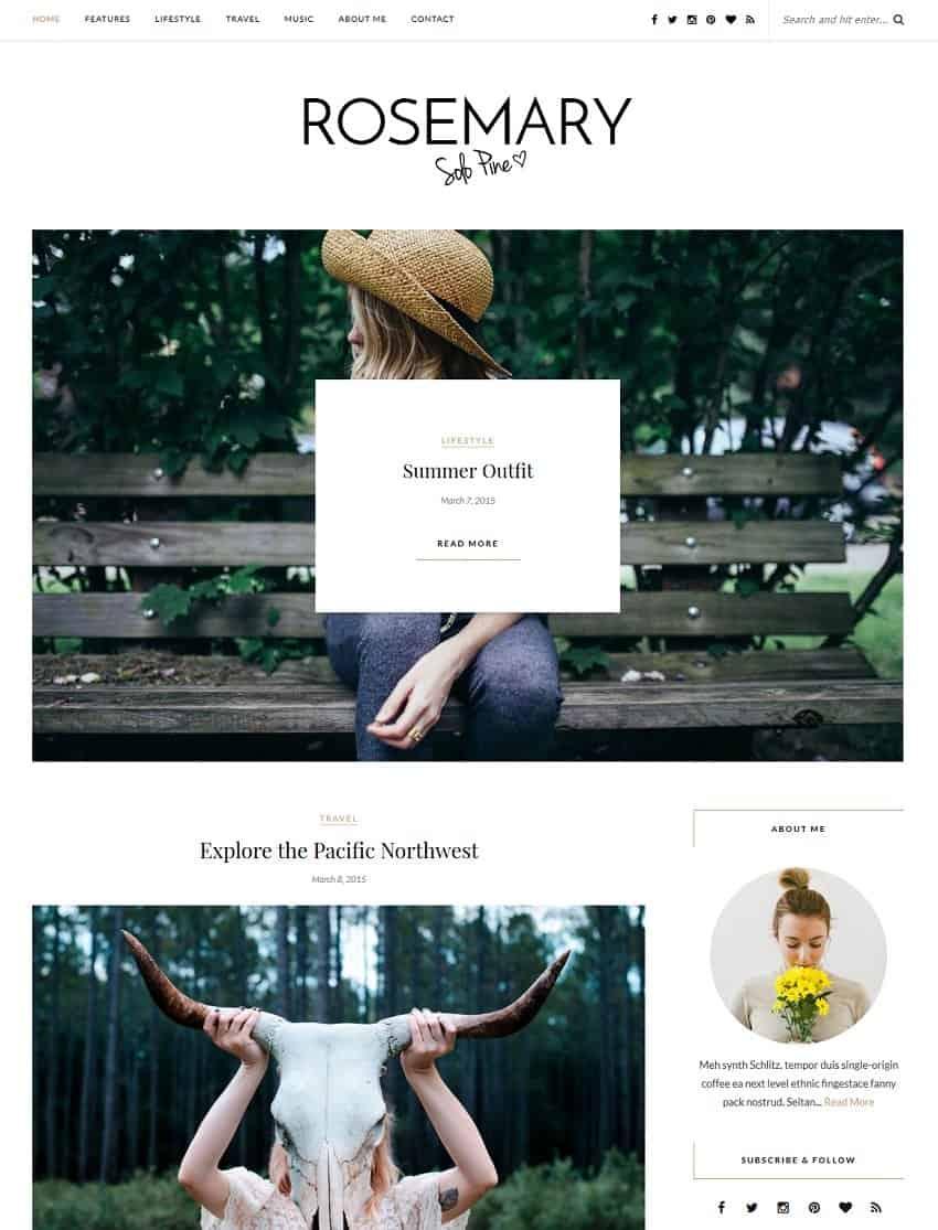 simple template for wordpress blog
