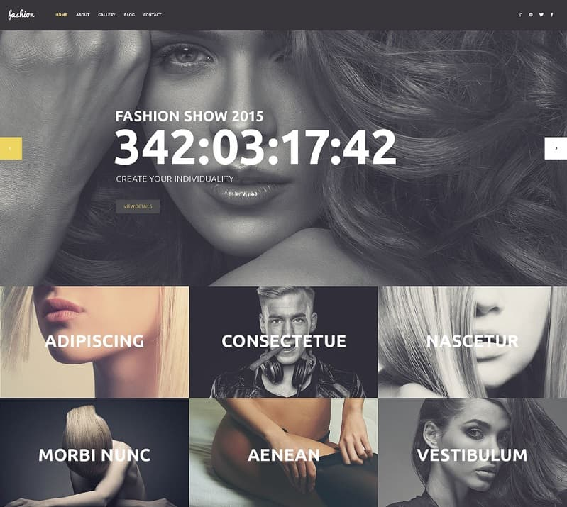 best creative wordpress theme
