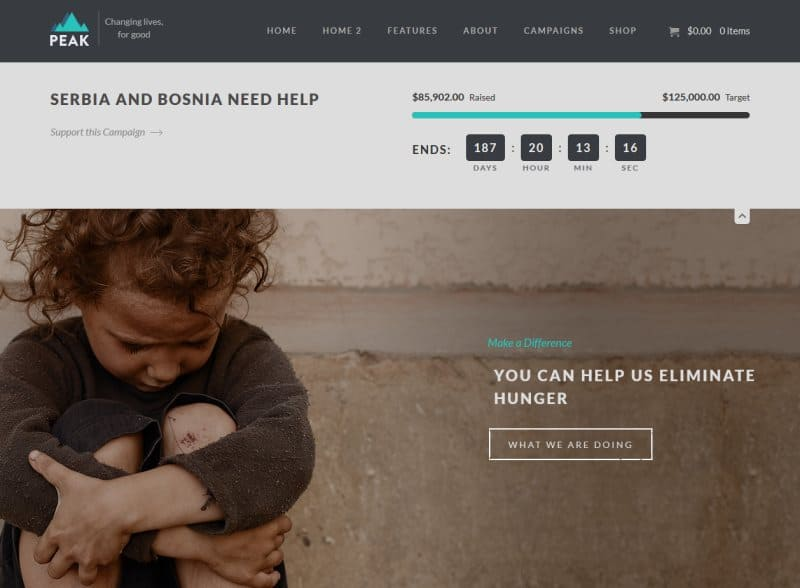 charity wordpress theme 2016