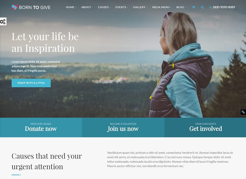born-to-give-charity-crowdfunding-wordpress-theme