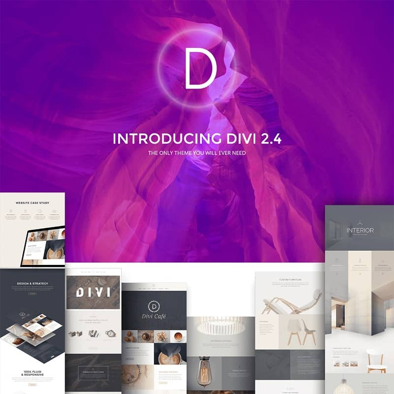 divi - best wordpress themes 2016