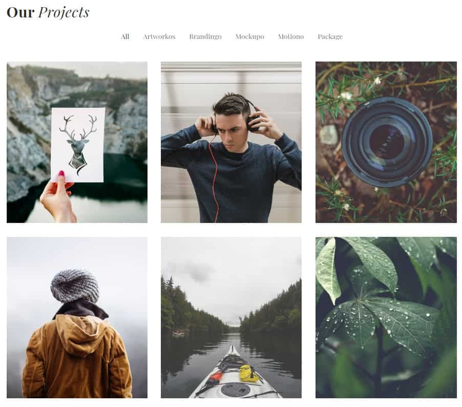 How to make your Gallery with Elementor WordPress Plugin