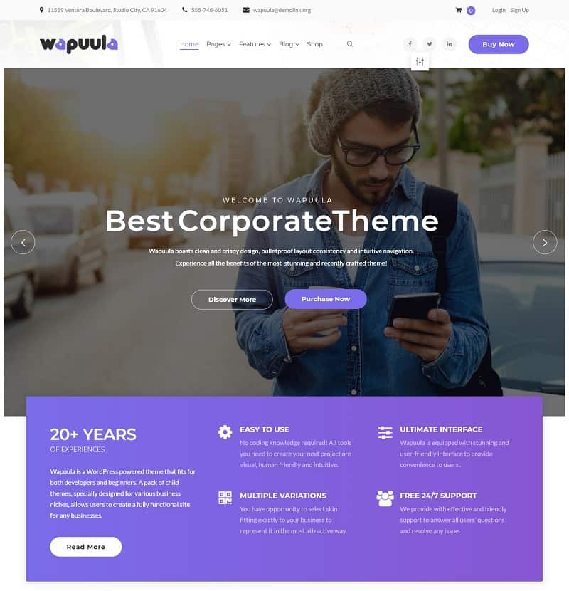 wappula corporate theme